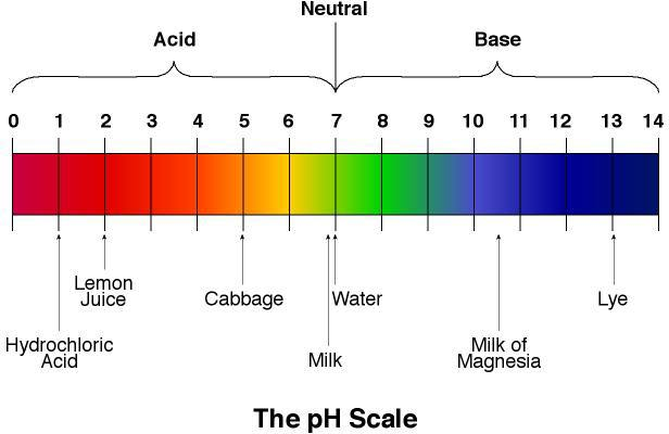 How Ph Levels Are Affected